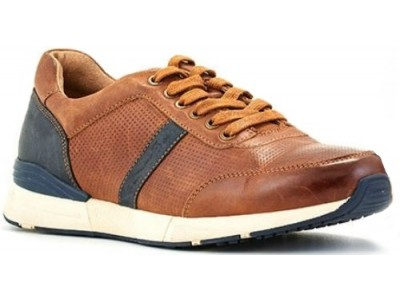 Greenstep SG DB182174-1 tobacco/navy