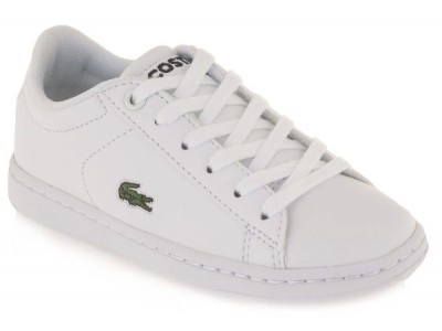Lacoste carnaby evo suc wht/wht