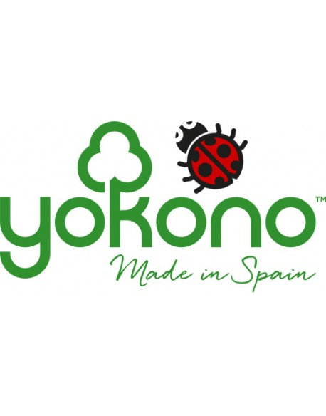 Yokono shoes